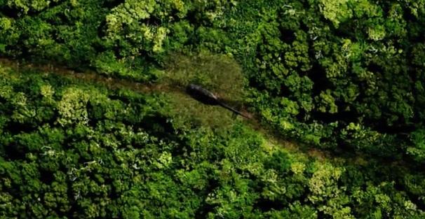 Jediná možnost úspěchu se jevila v hodně riskantním pokusu prosekat se bambusem za použití listů rotorů