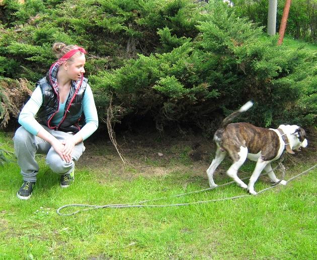 Pokus o seznámení jedné z místních dívek, které chodí :P rajtovat na pastviny