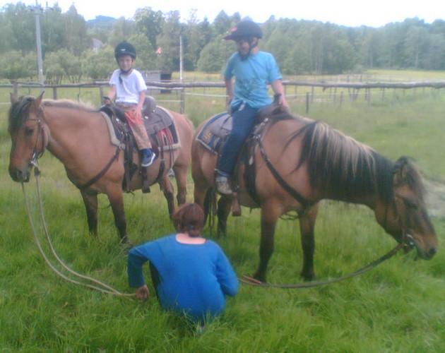 Mládí na pastvinách