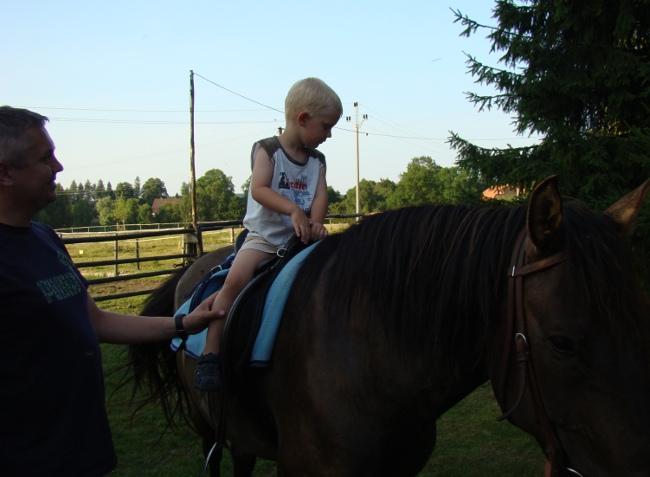 Svět při pohledu ze sedla na hřbetě koně vypadá poněkud jinak