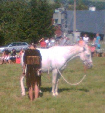 Nenásilně vkusný vztah s výslednou poslušností koně