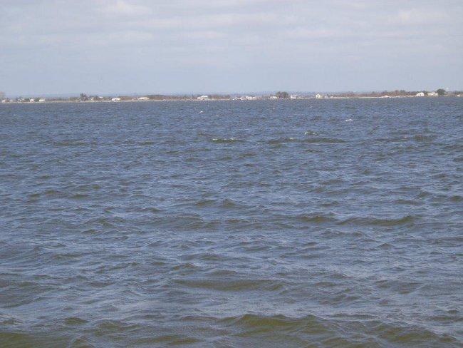 """Směr Sever. Moře, proužek pevniny, který se objevuje, posouvá, mizí a za nim další pruh vody, zaliv, asi 8 km mořské vody. Před zimou , nebo i později , když """"dojde"""" pitná voda na Fire Islandu a i do studní se dostane mořská voda, srnky dokáží najít správný směr a přeplavou celkem asi 11 km za sladkou vodou do Bay Shore. Mimochodem tam kousíček v  Deer Park  pracuju."""
