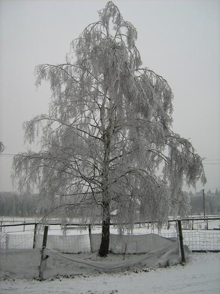 Třetí sníh