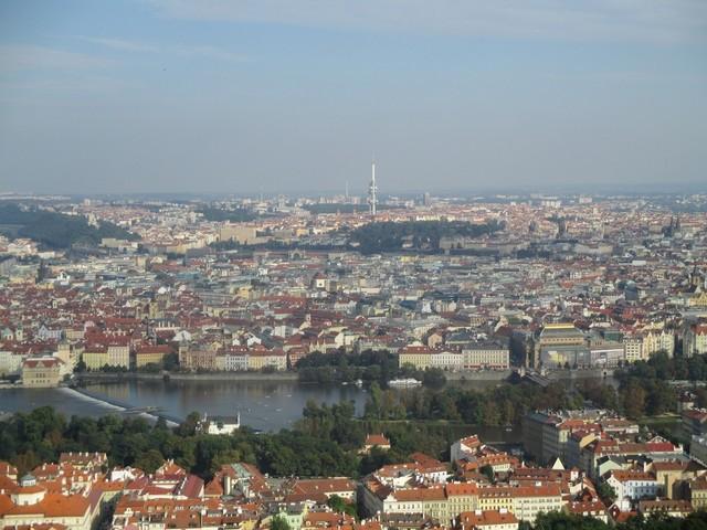 Prague ham